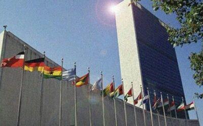 ¡Increíble! Chinches en un edificio la ONU