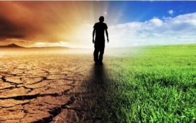 Calendario de plagas de insectos y el cambio climático