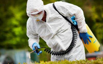 Control de plagas Madrid: Consejos para tener una casa protegida
