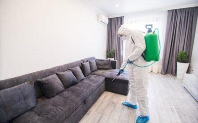 Eliminación de plagas, ¿cuál es el método más efectivo?